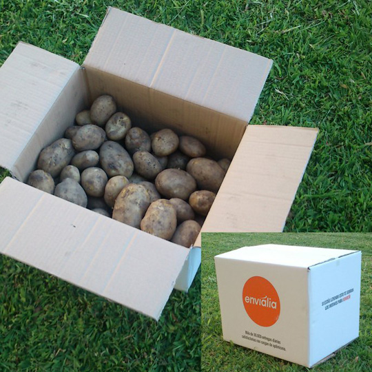 Box 20Kg Kennebec Galician Potatoes